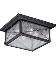 Wingate 11 Inch Wide 2 Light Outdoor Flush Mount