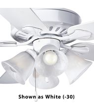 Progress Lighting P2616 Air Pro 15 Inch Fan Light Kit