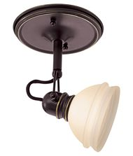 Sea Gull Lighting 94883 Ambiance Transitions 6 Inch Indoor Spotlight